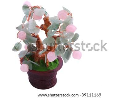 Oriental lucky tree isolated on white - stock photo
