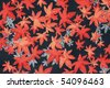 Oriental Silk Fabric Pattern - Maple Leaves - stock photo