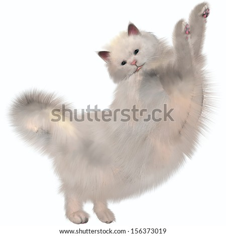 Oriental White Cat - Oriental Longhairs feature a long tubular, Siamese-style body but with a longer coat than the short-haired Siamese. - stock photo