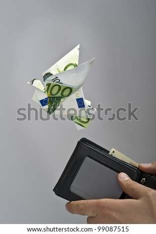 Origami bird made by euro flying away from a wallet - stock photo