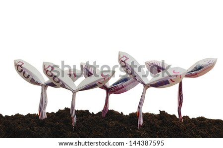 origami sprouts made from 500 Euro bill with isolate white background - stock photo
