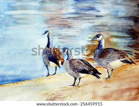 original art, watercolor painting of three geese at lake - stock photo