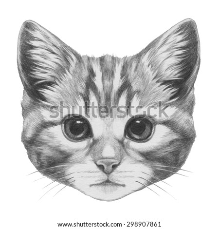 Cat Drawing Stock Images Royalty Free Images Amp Vectors