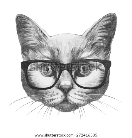 Original drawing of Cat with glasses. Isolated on white background - stock photo