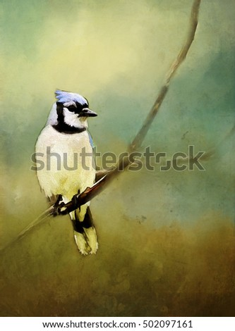 Original photograph of a bluejay transformed into a textured painting