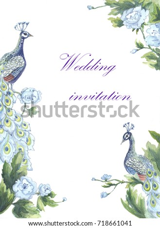 Colored Pencil Drawing Peacock Stock Images Royalty Free Images Amp Vectors