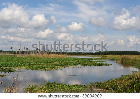 Orlando Wetlands Park - stock photo
