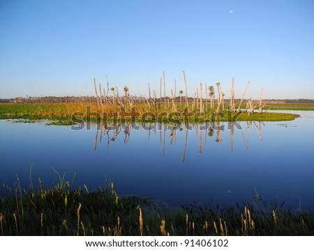 Orlando Wetlands Park Panorama Reflection Travel Harmony - stock photo