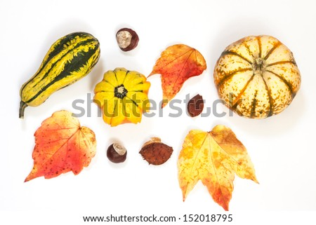 ornamental or decorative gourd on white background - stock photo