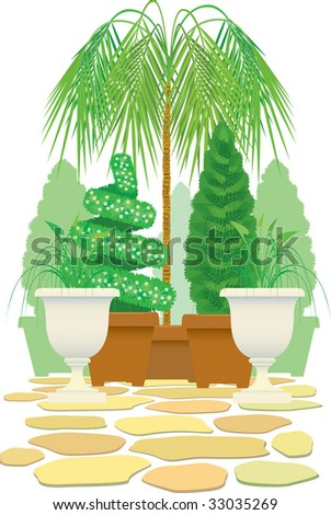Ornamental plants in special capacities for design of an interior, a garden, park. - stock photo