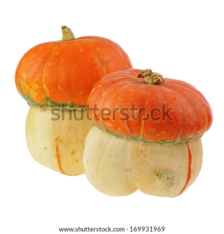 Ornamental pumpkin isolated on white background. Closeup.