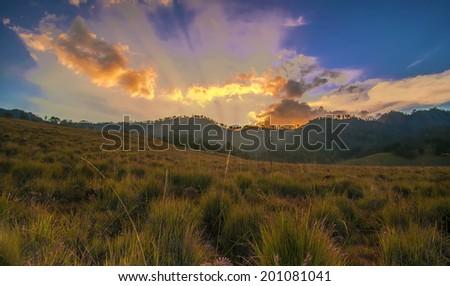 Oro Oro Ombo Savannah during sunset with rays of light at Semeru Volcano Mountain, East Java, Indonesia. Semeru Mountain also known as Mahameru Mountain in Indonesia means the great mountain.  - stock photo