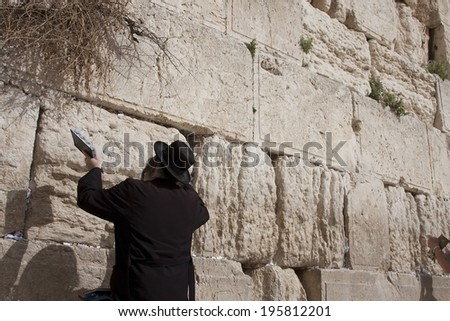 Orthodox Jew prays at the Western Wall  - stock photo
