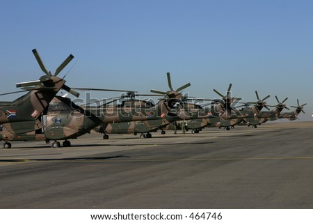Oryx helicopter tails - stock photo