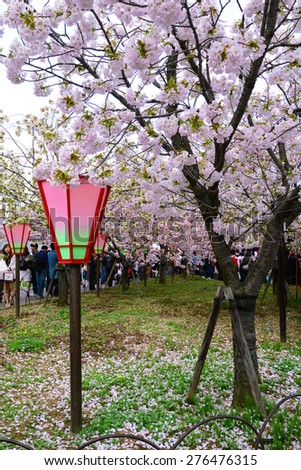 OSAKA, JAPAN - April 11: People visit Japan Mint in Osaka, Japan on April 11, 2015. It is the famous Cherry Blossom Viewing in Osaka. - stock photo