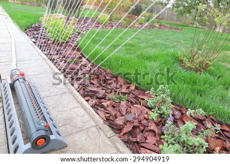 Oscillating sprinkler watering fresh green lawn grass in the autumn garden - stock photo