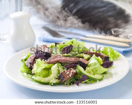 Ostrich (beef) salad with lettuce and cucumber, selective focus