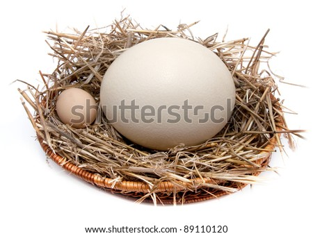 Ostrich egg and chicken egg - stock photo