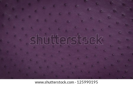 Ostrich Leather Texture in Purple - Detailed Close Up - stock photo