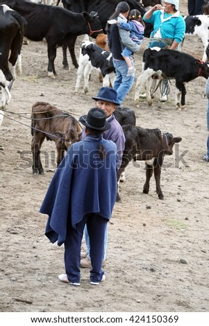 OTAVALO, ECUADOR - MARCH 5, 2016: Man in a poncho looking out at the cattle in the Otavalo Animal Market - stock photo