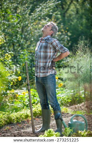Ouch my back ! An attractive grey hair man is stretching himself because he is feeling backpain after some gardening - stock photo