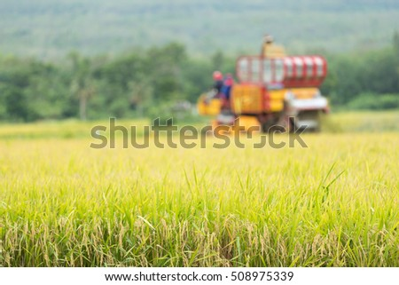 Out of focus Agriculture Industrial harvesting machinery working in Rice