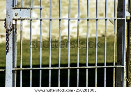 Out side prison bars with chain and rust - stock photo