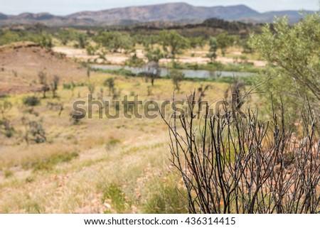 outback, northern territory, australia - stock photo