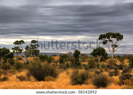 Outback scenery in the Red Centre of Australia (NT) - stock photo