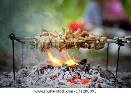 Outdoor Barbecue - stock photo