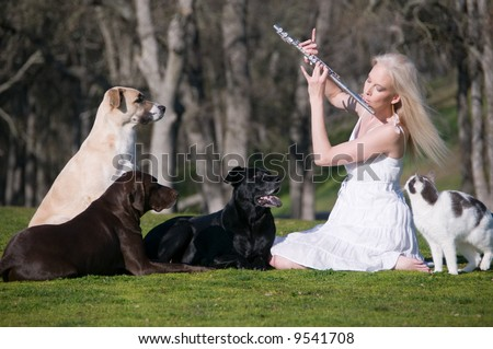 Outdoor candid capture of an attractive blond girl in a grassy meadow playing a flute recital to an audience of three dogs and a cat.