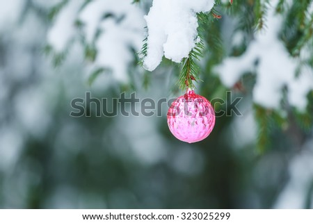 Outdoor Christmas pink round mirror ball ornament design is hanging on snowy spruce twig - stock photo