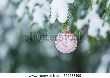 Outdoor Christmas rose color sphere mirror bauble ornament design is hanging on snowy spruce twig - stock photo