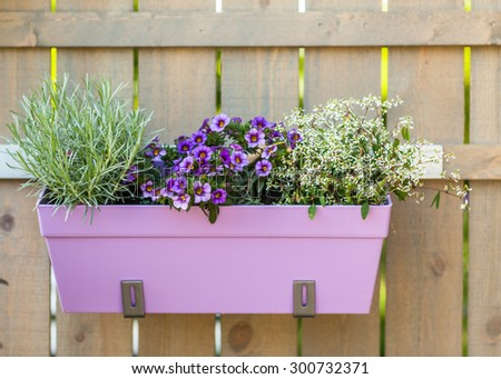 Outdoor flower pot hanging on wooden fence for small garden, patio or terrace - stock photo