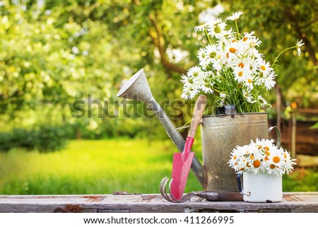 Outdoor gardening tools and daisy flowers/ Spring Gardening tools on beautiful garden background  - stock photo
