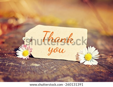 outdoor greeting card with text - thank you - stock photo