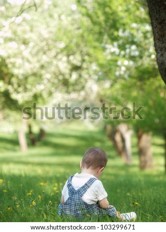 Outdoor little boy - stock photo