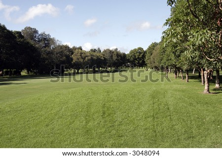 Outdoor Nature Golf Course On A Bright Summer Day