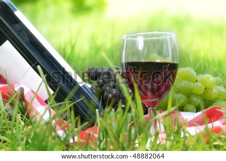 Outdoor picnic setting with wine - stock photo