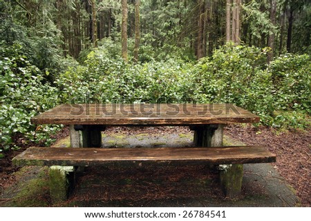 Outdoor Picnic table in rural wooded forest in america