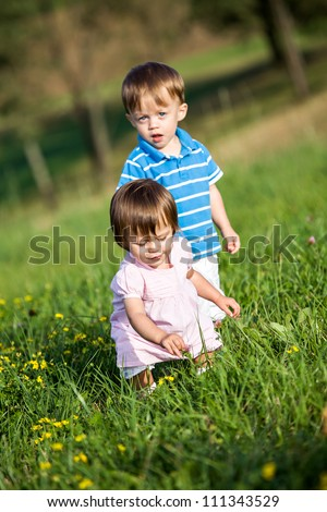 outdoor portrait of a little twins on the meadow
