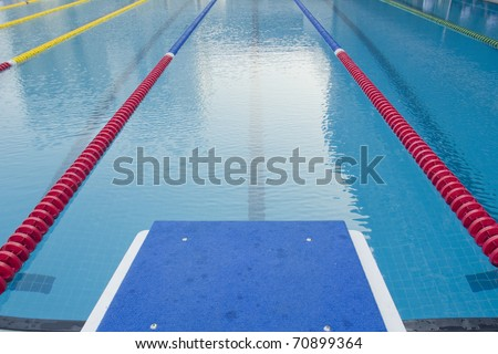 Outdoor Swimming Pool -- with clearly marked lanes for competitions
