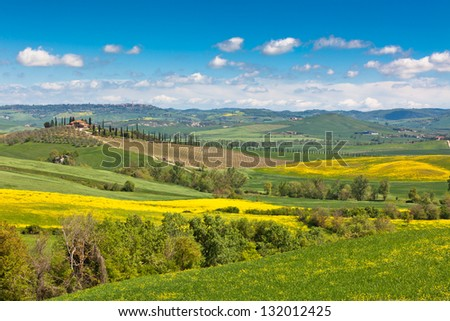 Outdoor Tuscan Val d'Orcia green and yellow fields view with blue sky