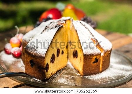 Outdoor view of a cherry vanilla cake with sugar powdered. Unsharp cherry on the side