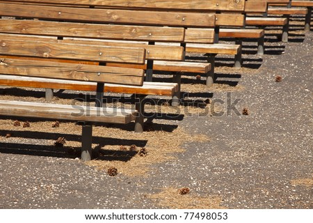 Outdoor Wooden Amphitheater Seating and Pine Cones and Pine Needles Abstract.