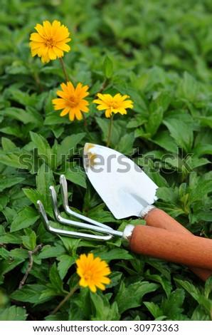 Outdoors garden tool - stock photo