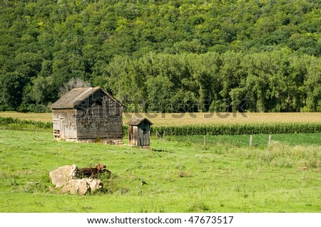outhouse out behind old weathered homestead house next too corn field in Minnesota - stock photo