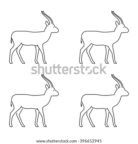Outline gazelle on a white background. Silhouette gazelle. Modern gazelle icon. Line set of springbok. - stock photo