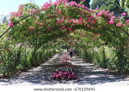 Outside The Flower Tunnel At The Rose Garden In Tacoma Washington