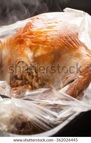 Oven roasted turkey in bag stuffed fresh out of oven - stock photo